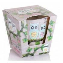 Sviečka vonná v skle Funny owls - wild berries 115g
