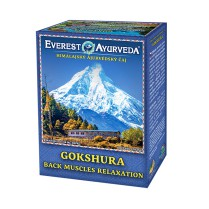 GOKSHURA-Bolesti chrbta a chrbtice čaj 100 g