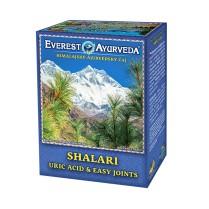 SHALARI-Dna a kĺbové opuchy čaj 100 g